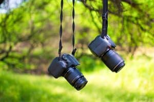 Online Photo Proofing For Photographers